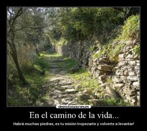 Camino.de.piedra