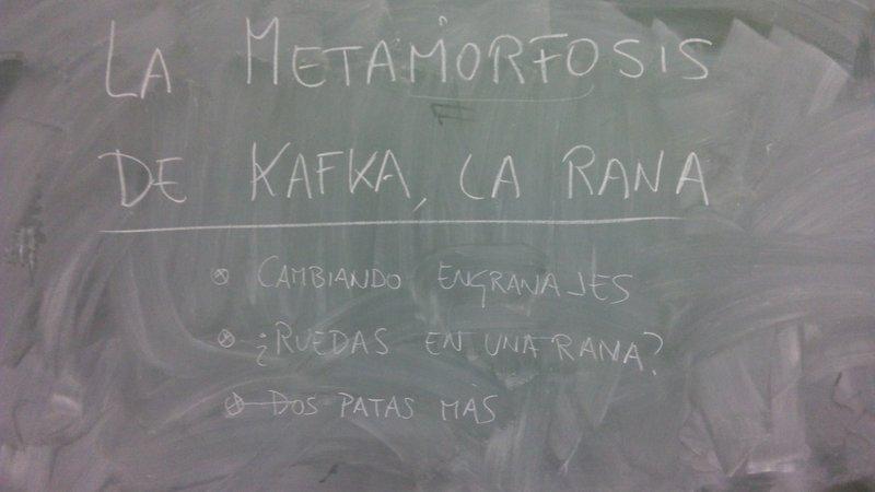 metamorfosis-resultado